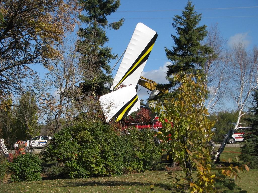 Ultralight Aircraft Engine Problems